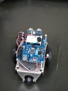 Activity Bot